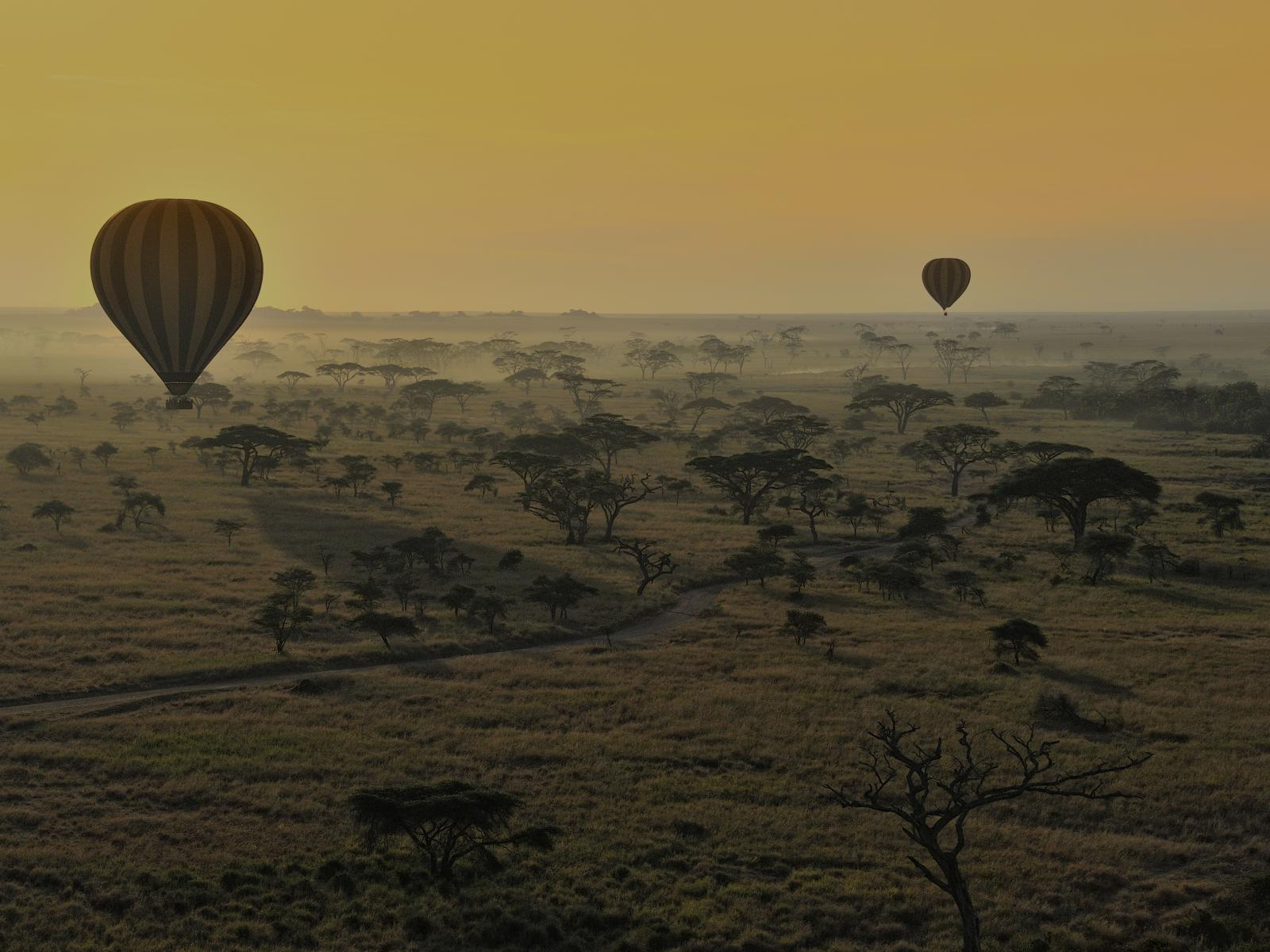 Hot Air Ballons, Serengeti, Tanzania
