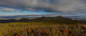 Grootbos Nature Reserve South Africa
