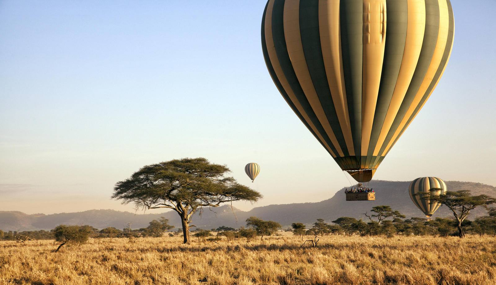 Hot Air Balloon Serengeti